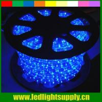 Best blue waterproof led strip lights 2 wire led christmas rope light wholesale