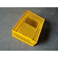 Quality Chicken Transporting Crates Plastic Chicken Crates for sale