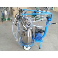 Quality Safe Comfortable Auto Single Cow Milking Machine Easy Operation / Maintenance for sale