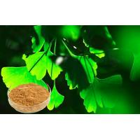 Quality CHP2015 Ginkgo Biloba Leaf Extract For Auxiliary Hypolipidemic for sale
