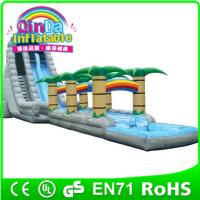 QinDa Inflatable Large Amusement Park Inflatable Water Slide for Sale