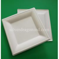 Best Biodegradable Disposable Sugarcane Pulp Paper Plate, 10 Inch Square Plate wholesale