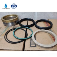China HIGH QUALITY TWS600 PLUNGER PUMP FLUID END PACKING SEALS SET for sale