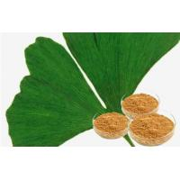 Quality Ginkgo Biloba Water Soluble Pure Herbs And Herbal Extracts Yellow Brown Powder for sale