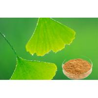 Quality Auxiliary Hypolipidemic Ginkgo Biloba Extract With GCAP Planting Base for sale