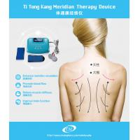 China Meridian Healthcare Digital Therapy Machine , Bio Electric Stimulation Therapy on sale