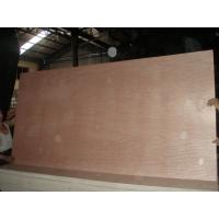 Quality bintangor poplar plywood for sale