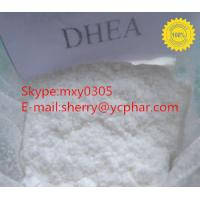 Dehydroisoandrosterone (DHEA) CAS: 53-43-0  The Raw Material Of Acetylene Progesterone!!!