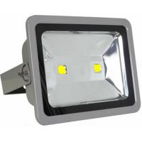 100W waterproof IP65 outdoor LED flood light Epistar/Bridgelux chip CE ROHS approved