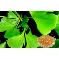 Quality Standardized Ginkgo Biloba Leaf Extract For Health Care Products for sale