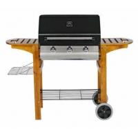 China Outdoor Gas Barbecue Oven on sale