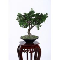 Quality Hand Crafted Faux Indoor Pine Tree Minimal Care Beautiful Artificial Arrangement for sale