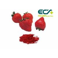 Quality Nutritional Organic Superfood Powder , Micronized Freeze Dried Strawberry Powder for sale