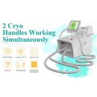 Quality 2020 hot sale 2 handles mini cryolipolysis fat freeze slimming machine with medical CE approval for sale