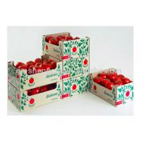 Quality Rectangle Corrugated Fruit Packing Boxes For Strawberries , Glossy / Matt Lamination for sale