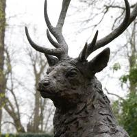 Quality Wildlife Metal Craft Life Size Bronze Casting Large Stag Deer Garden Statue for sale
