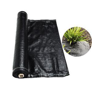 Circular Weaving Polypropylene Ground Cover , Landscape Ground Cover Fabric