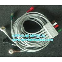 Quality Mindray PM7000 PM8000 PM9000  T5  T8 ECG Cable  five Leadwires  0010-30-43145 for sale