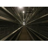Quality Full Automatic Broiler Chicken Cage System Easy Installation Poultry Shed Design for sale