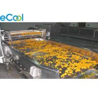 Quality Freon Refrigeration Multipurpose Cold Storage For Vegetables And Fruits 3000 Tons for sale