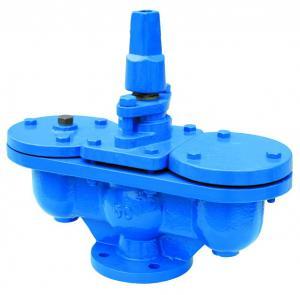 Quality Q10 Original Cast Iron Plastic Spraying SS304 Air Vent Valve for sale