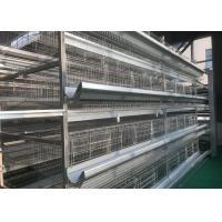 Quality High Density Automatic Poultry Feeder System Small Footprint Saving Land for sale