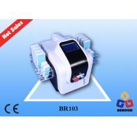 Best 12 Pads Mitsubishi Diodes Laser Liposuction Machines With Optional OEM Factory service wholesale