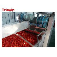 Quality 220V/380V Small Scale  Tomato Paste Processing Line With Sorting Section for sale