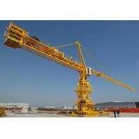 Quality QTZ80 6010  Tower Crane jib length can be customized,with additional remote control device for sale