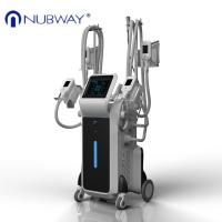 Quality Loss Weight cryolipolysis 4 handles fda cryotherapy slimming beauty instrument for spa for sale
