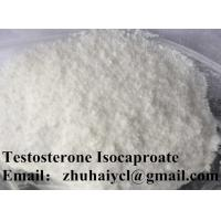 Quality Testostero Testosterone Isocaproate Steroid For Sexual Dysfunction for sale