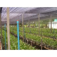 Quality China manufacturer agricultural shade net sun for sale