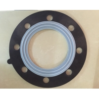 Quality ISO9001 EPDM Tetrafluoro Exhaust High Conduits O RING Gasket 316LSS for sale