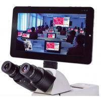 5MP Microscope Pad Camera, Bundle Professional Measuring Software with Win 7(10