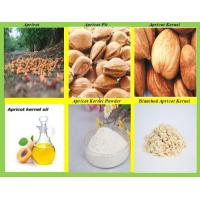 Best Sweet Apricot kernels Powder,Debittered Apricot Kernels Powder wholesale