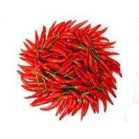 Quality Fresh red chilli, organic chilli, frozen red chilli, hot chilli, spicy seasoning for sale
