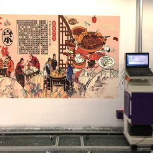 Quality CMYK 12㎡/h 720X1080DPI 400ml ink wall painting machine for sale