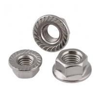 Quality M12x25 DIN6923 Heavy Hex Nuts Hex Serrated Flange Nut Stainless Steel Bolt Pine for sale