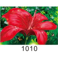 Quality 0.6mm PET+157g Coated Paper 3D Lenticular Pictures With 40*60cm Size for sale