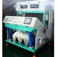 China Impurities 192 Chutes CCD Coffee Bean Color Sorter for sale