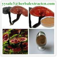 Quality reishi mushroom series: Reishi slices, Reishi Mushroom Extract polysaccharide 20% triterpenoids1% , Manufacture for sale
