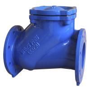 Quality Stainless Steel Bolt API594 TFL Industrial Check Valves PN10 PN16 for sale