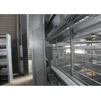 Quality Industrial Battery Broiler Cage System Enriched Cages For Laying Hens for sale