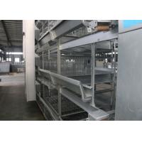 Quality Safety H Type Broiler Poultry Farming Equipment Free Layout Design for sale