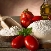Quality MF Flour Mesh - PET-MF Series Flour Mesh for sale
