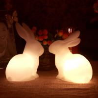 Quality animal night light/rabbit/gift/homemade christmas gifts/wedding/valentines day gifts/ for sale
