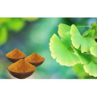Quality EP9.0 Low Ginkgolic Acid Ginkgo Leaf Extract With GCAP Planting Base for sale