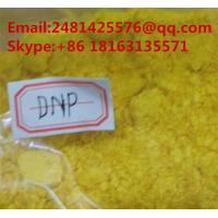 China Weight Loss 2,4- Dinitrophenol DNP Anabolic Raw Steroid Powder for Obesity CAS 51-28-5 on sale