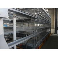 Quality Durable Poultry Keeping Equipment  For Large Scale Production Chicken Farming for sale