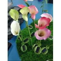 Best solar energy inserts natural touch flower and plant led scalla lily solar lamp garden wholesale